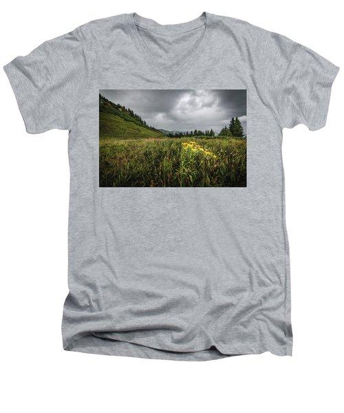 La Plata Wildflowers Men's V-Neck T-Shirt