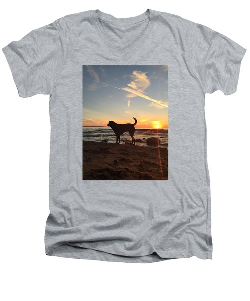 Men's V-Neck T-Shirt featuring the photograph Labrador Dreams by Paula Brown