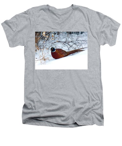 Lake Country Pheasant Men's V-Neck T-Shirt by Will Borden