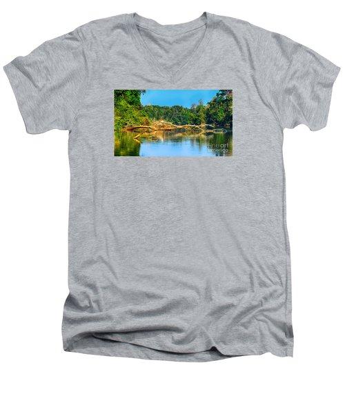 Lake In A Jungle Men's V-Neck T-Shirt