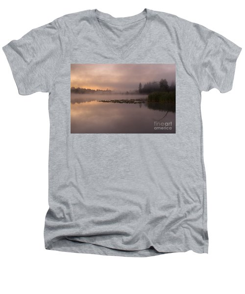 Lake Marsh Men's V-Neck T-Shirt