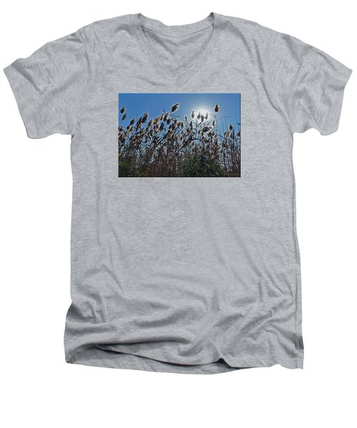Lakeside Plants Men's V-Neck T-Shirt