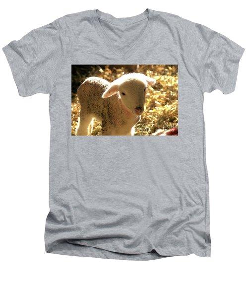 Lamb All Aglow Men's V-Neck T-Shirt