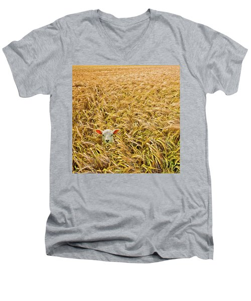 Lamb With Barley Men's V-Neck T-Shirt