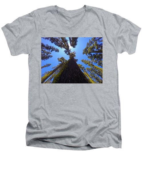 Land O' Trees Men's V-Neck T-Shirt