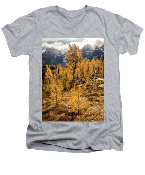 Larch Family Men's V-Neck T-Shirt