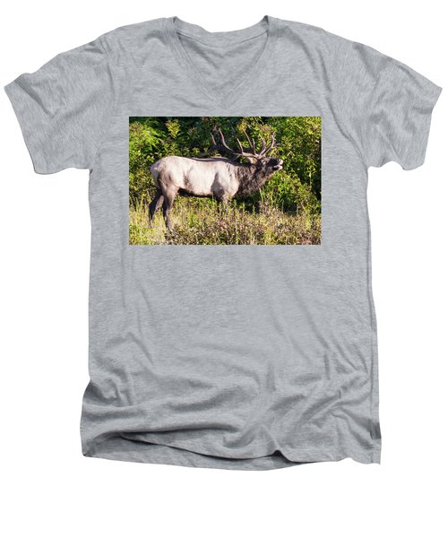 Large Bull Elk Bugling Men's V-Neck T-Shirt