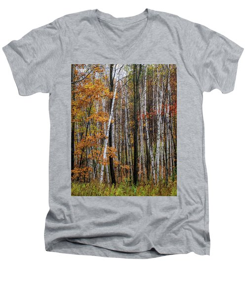 Last Stand Men's V-Neck T-Shirt
