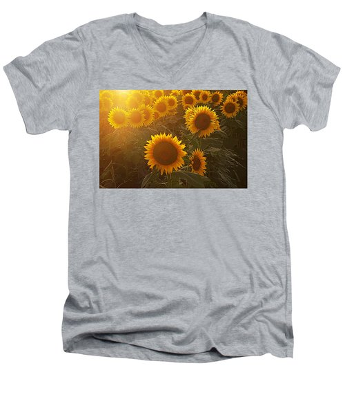Late Afternoon Golden Glow Men's V-Neck T-Shirt