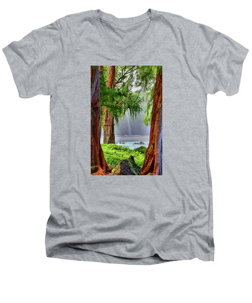Men's V-Neck T-Shirt featuring the photograph Laupahoehoe Hawaii by DJ Florek