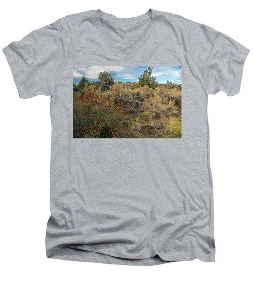 Lava Formations Men's V-Neck T-Shirt