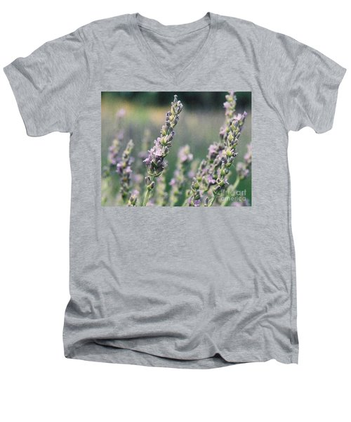 Men's V-Neck T-Shirt featuring the painting Lavender by Eric  Schiabor