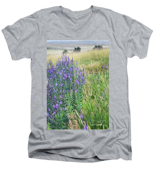 Lavender Hills Men's V-Neck T-Shirt