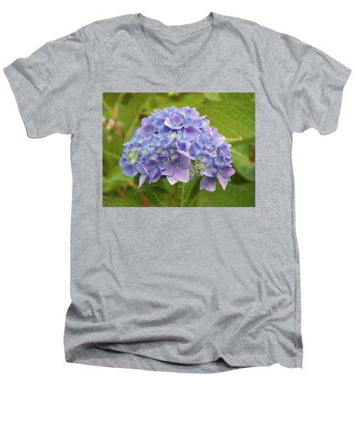 Lavender Hydrangea Men's V-Neck T-Shirt