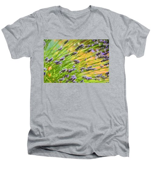 Lavender Men's V-Neck T-Shirt by Josephine Buschman
