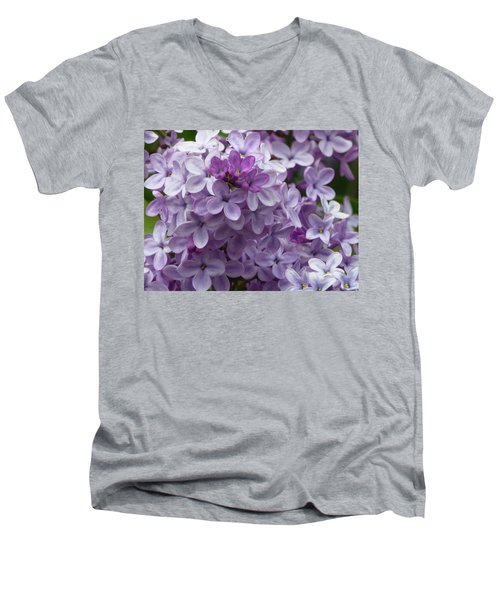 Lavender Lilacs Men's V-Neck T-Shirt