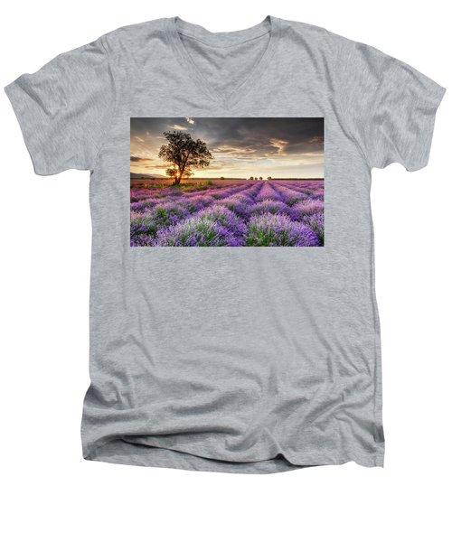 Lavender Sunrise Men's V-Neck T-Shirt
