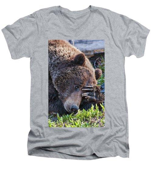 Lazy Bear Men's V-Neck T-Shirt