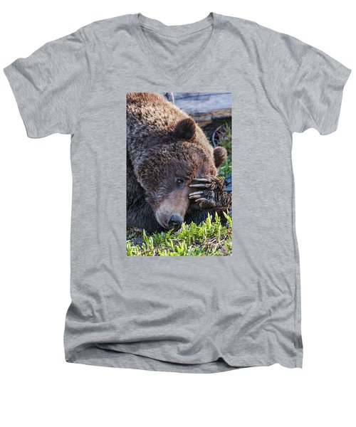 Men's V-Neck T-Shirt featuring the photograph Lazy Bear by Wesley Aston