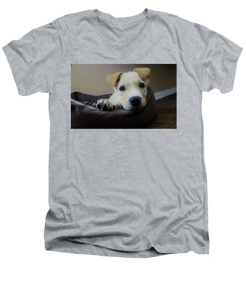 Lazy Day Men's V-Neck T-Shirt by Aaron Martens