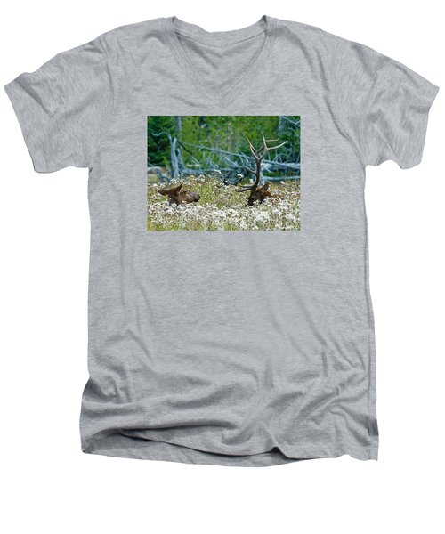 Men's V-Neck T-Shirt featuring the photograph Lazy Days by Wesley Aston
