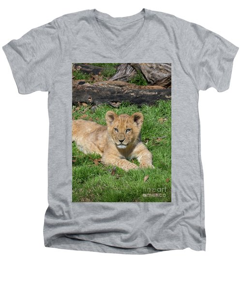 Lazy Little Leo Men's V-Neck T-Shirt