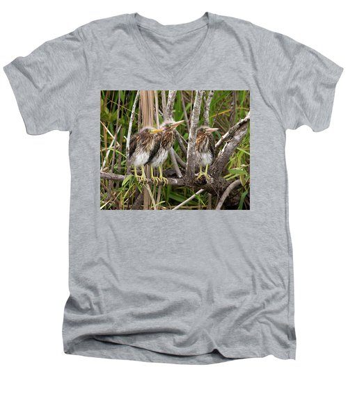 Learning To Be Self Sufficient Men's V-Neck T-Shirt by Lamarre Labadie