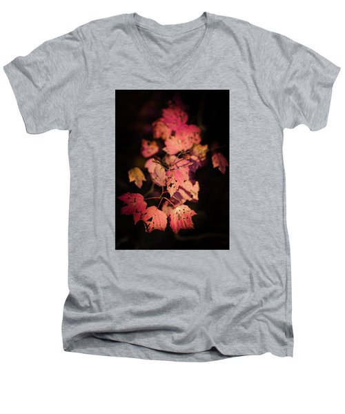 Leaves Of Surrender Men's V-Neck T-Shirt by Karen Wiles