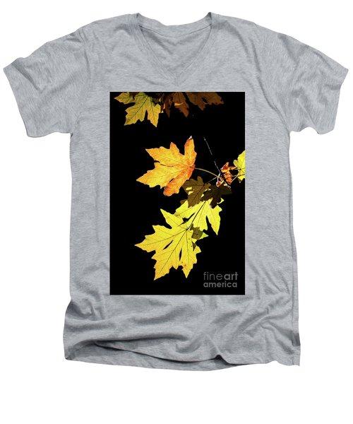 Leaves On Black Men's V-Neck T-Shirt