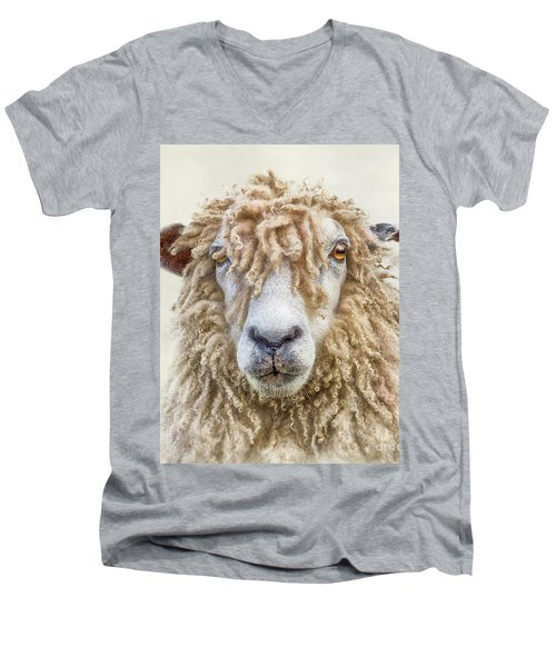 Leicester Longwool Sheep Men's V-Neck T-Shirt by Linsey Williams