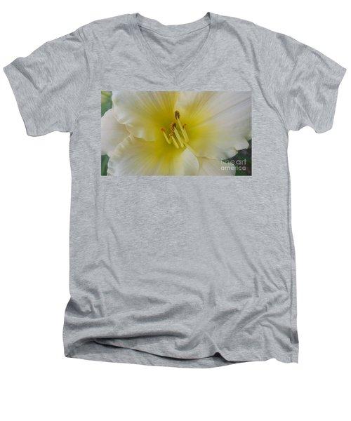 Lemon Daylily Men's V-Neck T-Shirt