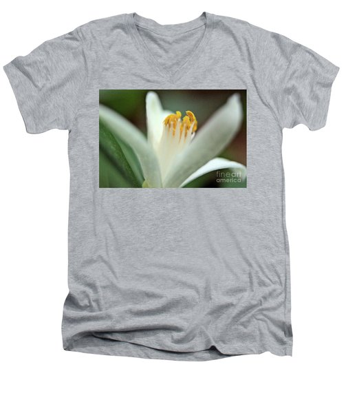 Lemon Flower 2018 Men's V-Neck T-Shirt