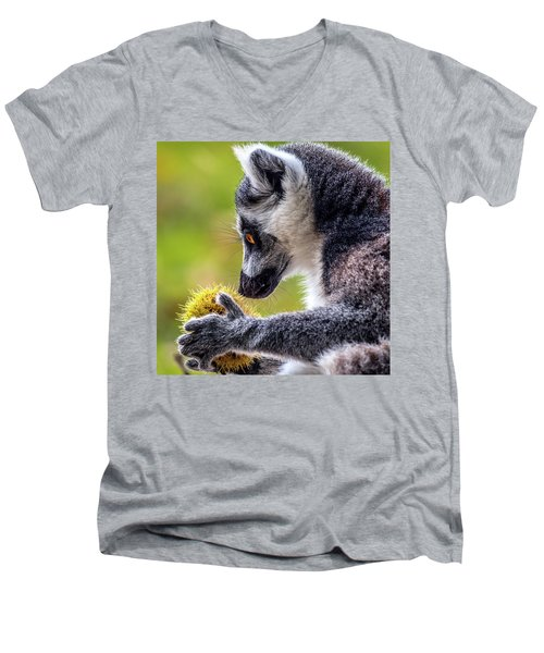 Men's V-Neck T-Shirt featuring the photograph Lemur And Sweet Chestnut by Nick Bywater
