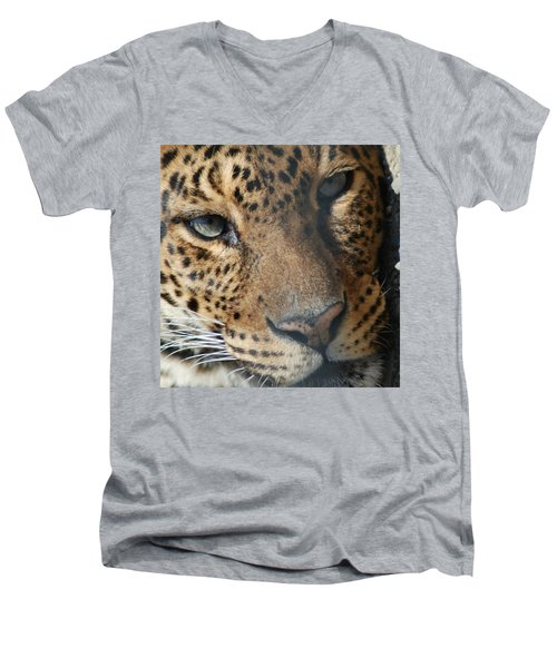 Men's V-Neck T-Shirt featuring the photograph Leopard Face by Richard Bryce and Family