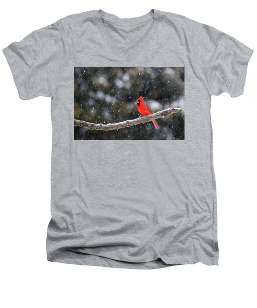 Men's V-Neck T-Shirt featuring the photograph Let It Snow by Mircea Costina Photography