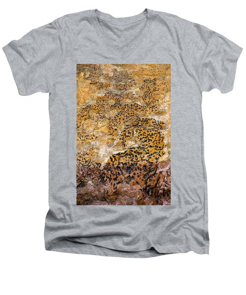 Men's V-Neck T-Shirt featuring the photograph Lichen Abstract, Bhimbetka, 2016 by Hitendra SINKAR