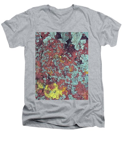 Lichen Colors Men's V-Neck T-Shirt by Todd Breitling