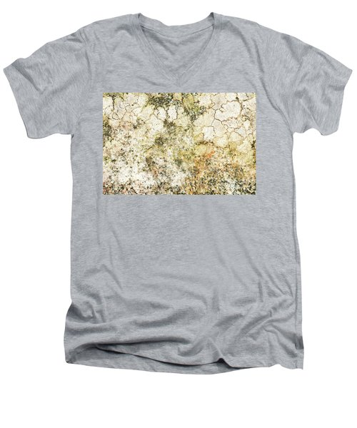 Men's V-Neck T-Shirt featuring the photograph Lichen On A Stone, Background by Torbjorn Swenelius