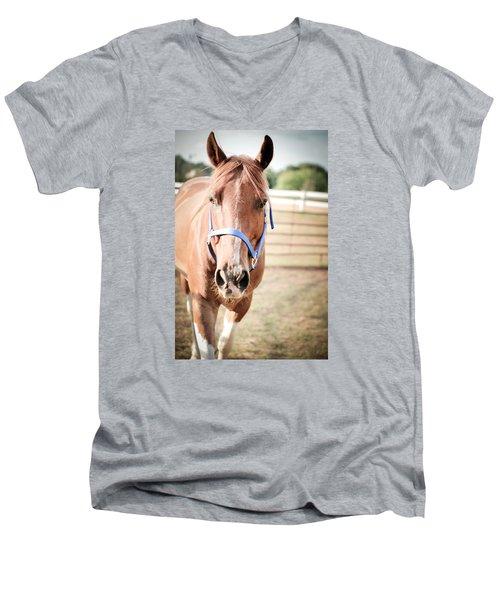 Light Brown Horse Named Flash Men's V-Neck T-Shirt by Kelly Hazel