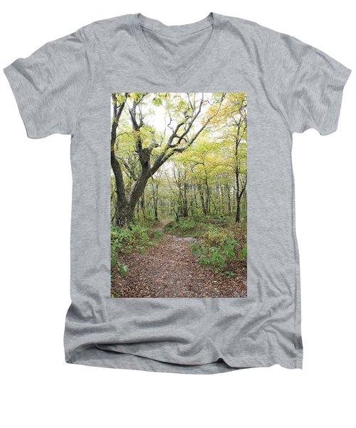 Light On Path Men's V-Neck T-Shirt