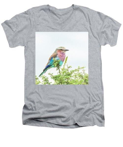 Lilac Breasted Roller. Men's V-Neck T-Shirt