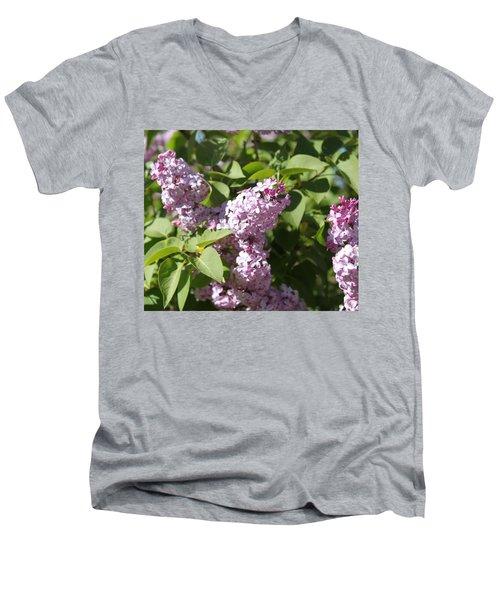 Lilacs 5544 Men's V-Neck T-Shirt