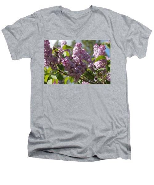Lilacs 5548 Men's V-Neck T-Shirt