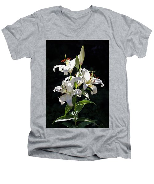 Lilies In The Sun Men's V-Neck T-Shirt