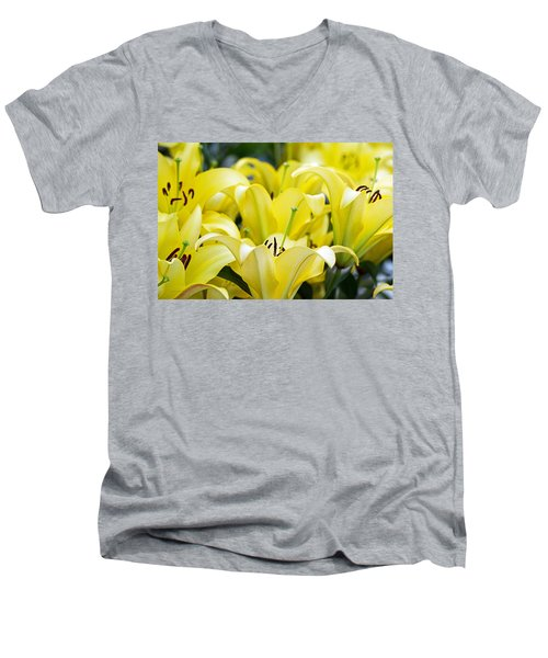 Lilies Of The Field #2 Men's V-Neck T-Shirt