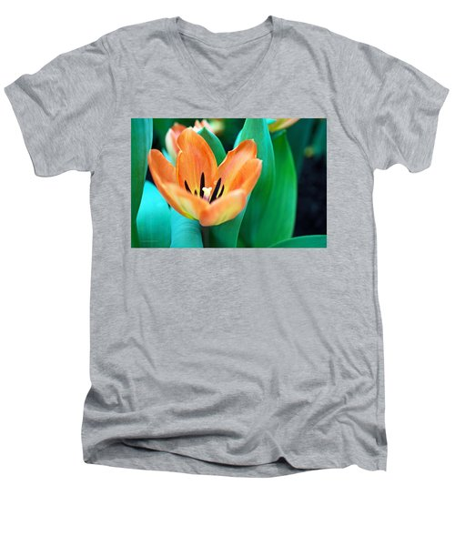 Lily #4 Men's V-Neck T-Shirt
