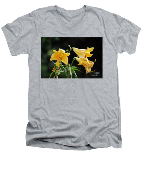 Lily Lily Where Art Thou Lily Men's V-Neck T-Shirt