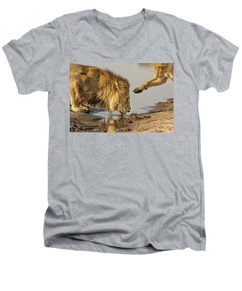Lion Affection Men's V-Neck T-Shirt