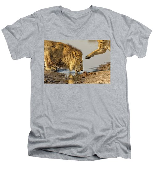 Lion Affection Men's V-Neck T-Shirt