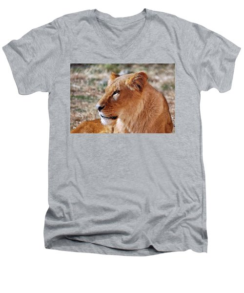 Lion Around Men's V-Neck T-Shirt